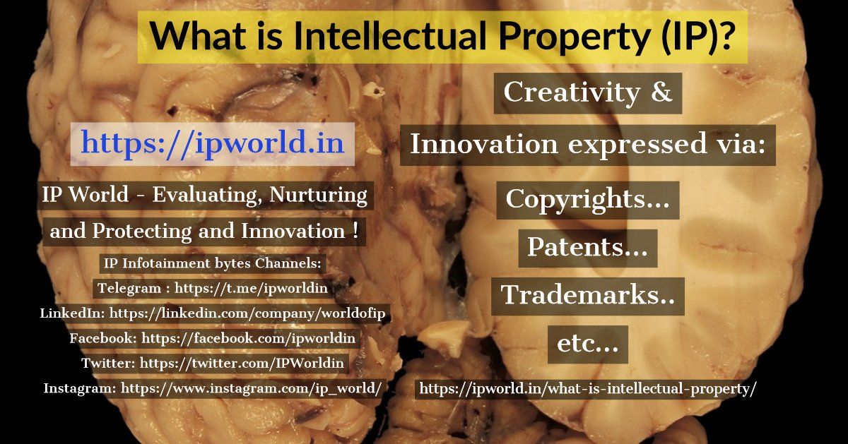 What is Intellectual Property ?